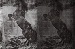 Wall&Deco — El caballo de Andy WDEC1301