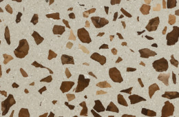 Mipa — Seeds Lentil